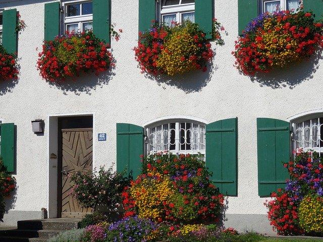 Jak správně zazimovat balkonové rostliny