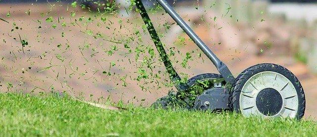 Jak v létě pečovat o trávník