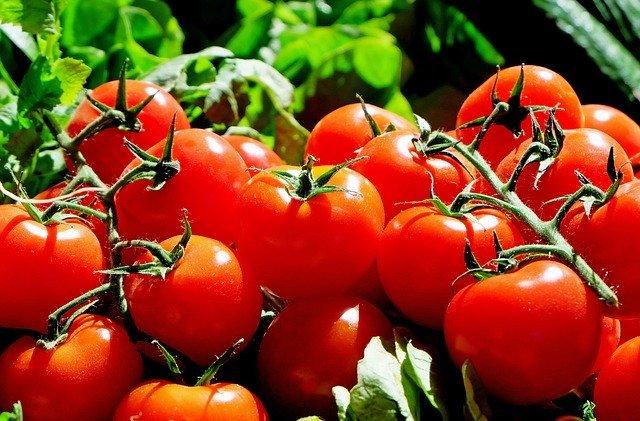 3 recepty z rajčat snadno a rychle